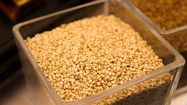 Sesame, Sesami, Seeds, Source, Oilperilla, Sesami Oil