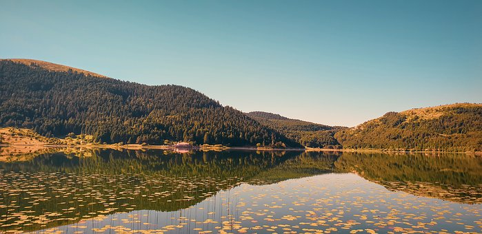 Lake, Mountain, Green, Tree, Forest, Sky, Reflection