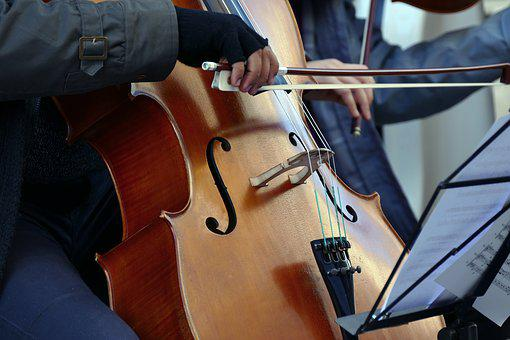 Violinist, Cellist, Artist, Street Musician, Violin