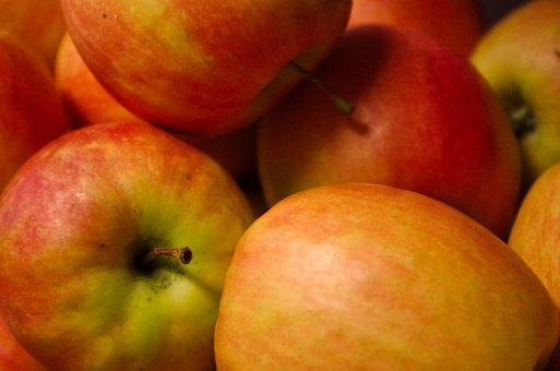 Apple, Healthy, Fruit Vitamins, Harvest, Ripe, Orchard