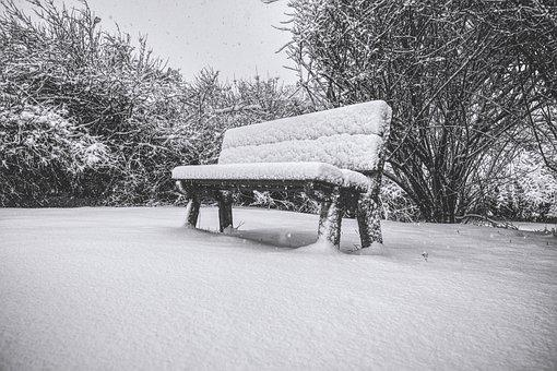 Bench, Snow, Winter, Cold, Nature, Tree, Lonely, Park