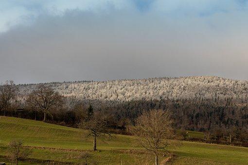 Hill, Frost, Fog, Mood, Mountain, Season, Cold, Ripe