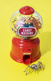 Bug, Candy, Candy Machine, Colorful, Decoration, Insect