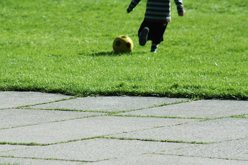 Ball, Football, Meadow, Play, Sport, Grass, Ball Sports