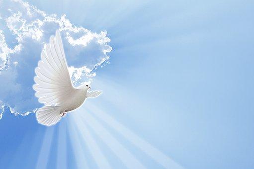 God, Santo, Paloma, Animal, Pure, Sky
