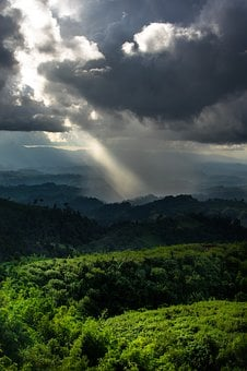 Landscape, Sunrays, Bandarban, Nature, Forest, Sunlight