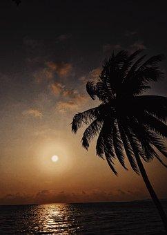 Beach, Beauty, Calm, Dark, Dusk, Evening, Holiday