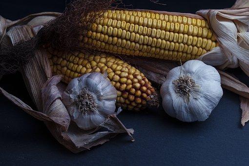 Corn, Garlic, Onion, Eat, Fresh, Nutrition, Food