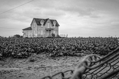 Abandoned, Black And White, House, Farmhouse