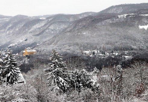 Winter, Snow, Landscape, Forest, Snowy, Nature