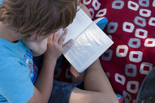 Reading, Picnic, Summer, Park, Outdoors, Read, Relax