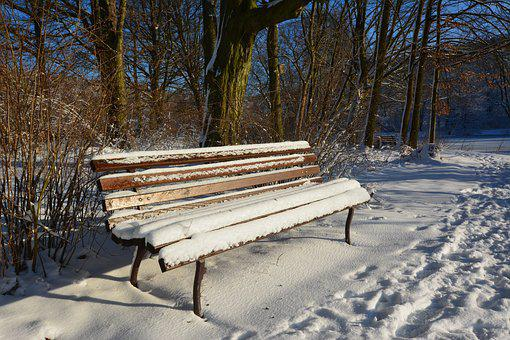 Winter, Park, Wintry, Tranquility Base, Sun
