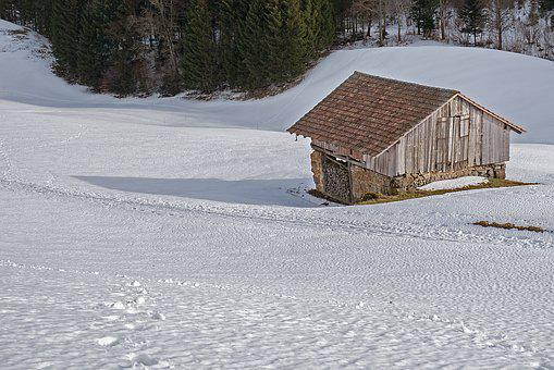 Scale, Tool Shed, Hut, Snow, Agriculture