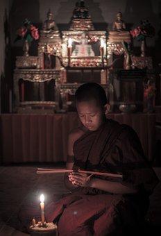 Novice, Monks, Buddhism, Buddha, Measure, Tradition