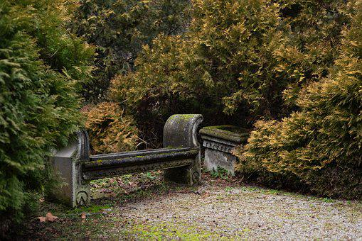 Bench, Park, Nature, Alone, Leaves, Outdoors, Dream