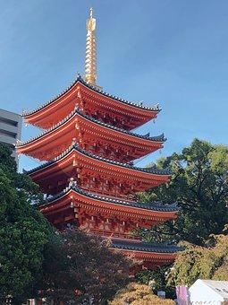 Japan, Fukuoka, Total 岡, The Company