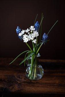 Flowers, Spring Flowers, White, Blue, Vase, Flower Vase