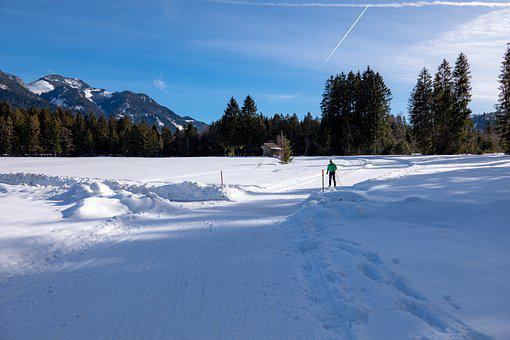 Cross Country Skiing, Snow, Traces, Ski, Winter, Skiing