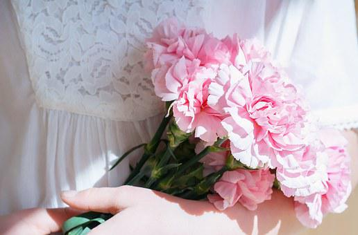 Flowers, Bouquet, Cloves, Pink, Cut Flowers