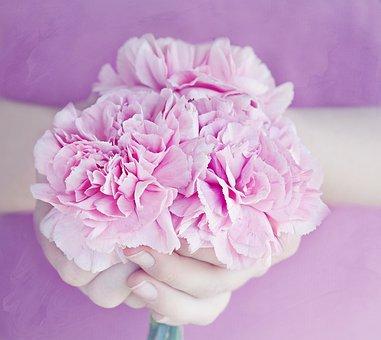 Flowers, Cloves, Pink, Bouquet, Hands, Held