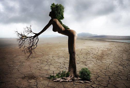 Woman, Female, Beautiful, Erotic, Sensual, Tree, Nature