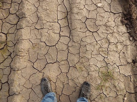 Earth, Drought, Drying, Infertility, Soil, Agriculture