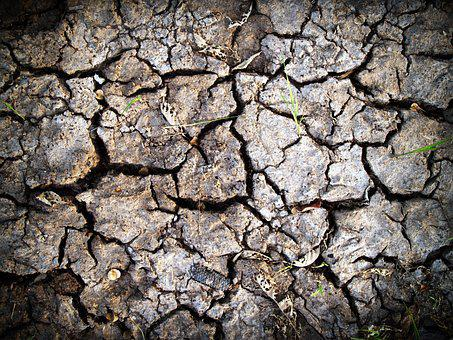 Soil, Rough, Earth, Split, Crack, Ecology, Summer