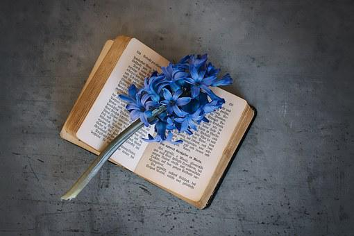 Book, Old, Old Book, Used, Book Pages, Font, Flower