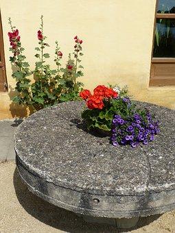 Mill, Millstone, Stone, Disc, Geranium, Stock Rose