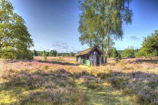 Hut, Lüneburg Heath, Nature, Heide, Heather, Hiking