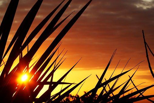 Reunion Island, Sunset, Evening, Inflamed, Sun, Ocean