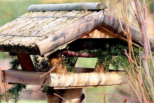 Aviary, Bird, Hidden, Feeding, Feeding Place