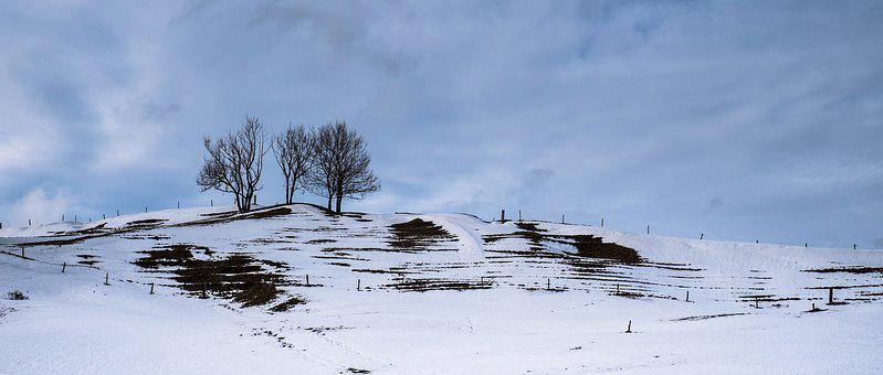 Landscape, Snow Landscape, Snow Melt, Wintry, Winter
