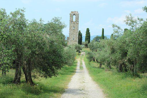 Italy, Ruin, Olive Trees, Away, Summer, Landscape