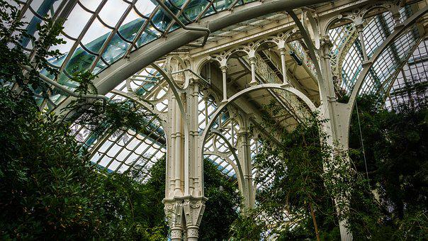 Architecture, Steel, Glass, Interior View, Palm House