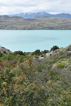 Patagonia, Torres Del Paine, National Park, Lake, Water