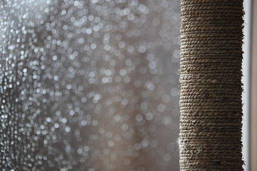 Rain, Drip, Drop Of Water, Wet, Liquid, Weather, Window