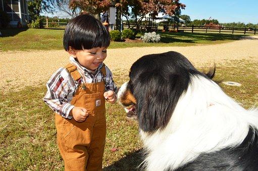 Kid, Dog, Friend, Nature, Animal, Toddler, Child, Love