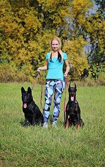 Doberman, Black German Shepherd, Dogs, Blonde Woman