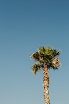 Beach, Blue, Blue Sky, Bright, Bright Blue, Clear