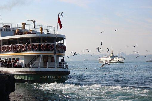 V, Beach, Marine, Seagull, Gulls, Birds, Sky, Ship