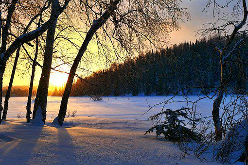 Sunset, Winter, Nature, Sky, Cold, Trees, Twilight