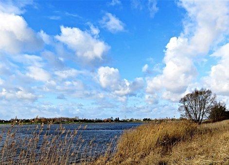 Landscape, River, Elbe, Bank, Northern Germany, Winter
