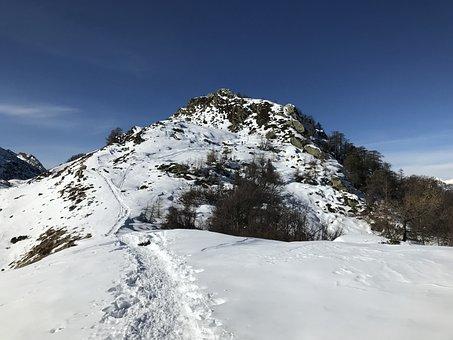 Lace Lion, Alpine Route, Alps, Alpine, Adventure, Walk