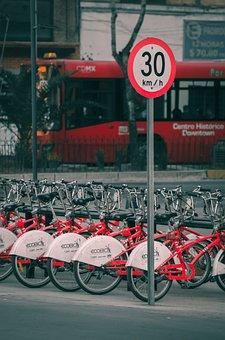 City, Bikes, Signal, Bike, Urban, Cycling