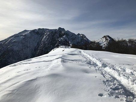 Lace Lion, Gridone, Alpine Route, Alps, Alpine