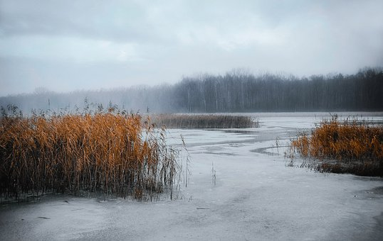 Cold, Ice, Winter, Frozen, Snow, Landscape, Polar