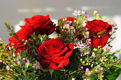 Roses, Bouquet, Valentine's Day, Flowers, Love