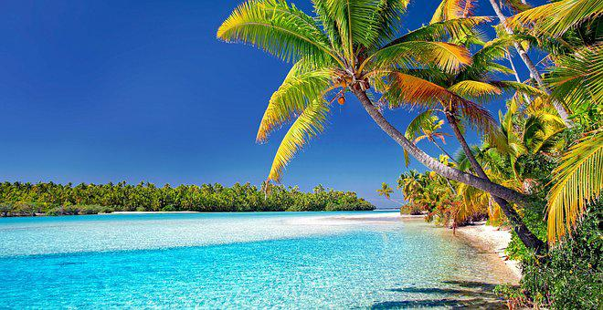 Cook Islands, Beach, Palm Trees, Sand, Sea, Island