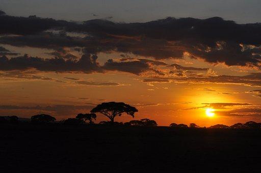 Sunset, Kenya, Africa, Nature, Landscape, Silhouette